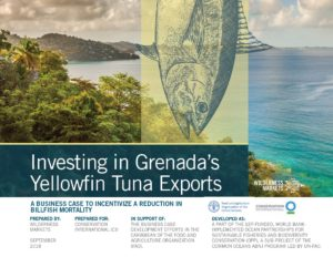 Investment Pipeline Building, Grenada