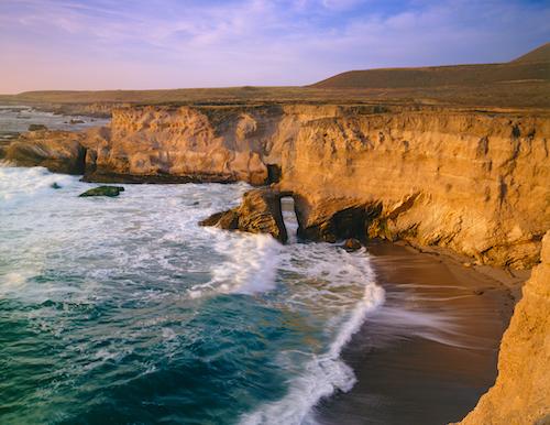 west coast sustainable fisheries