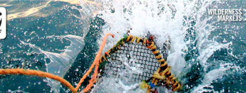 sustainable fisheries fund